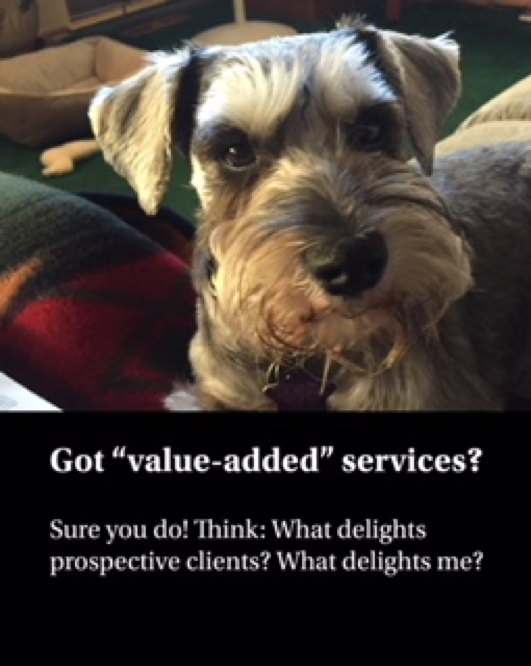 Got value-added services? Sure you do! Think: What delights  prospective clients? What delights me?