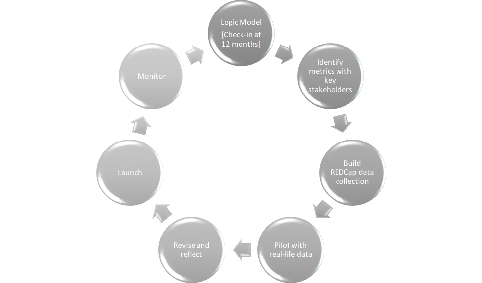 Phases of Development & Feedback Loops