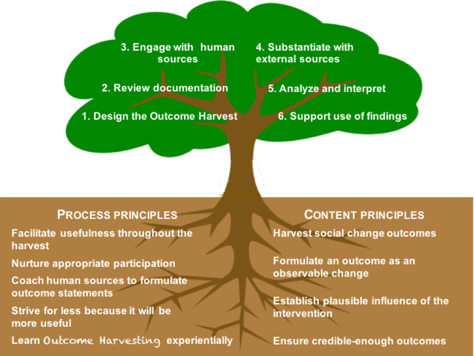 OH Process and Content Principles