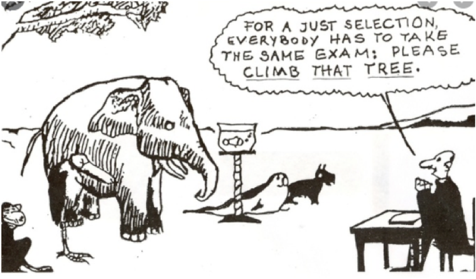 assessment cartoon