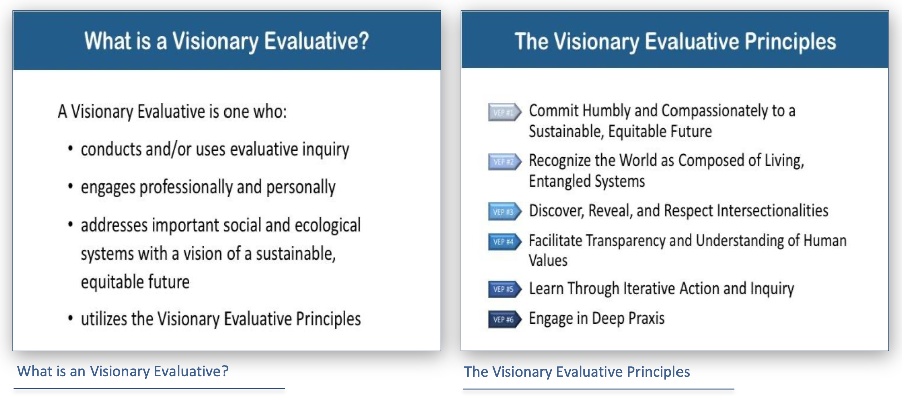 What is a Visionary Evaluative and Visionary Evaluative Principles bullet points