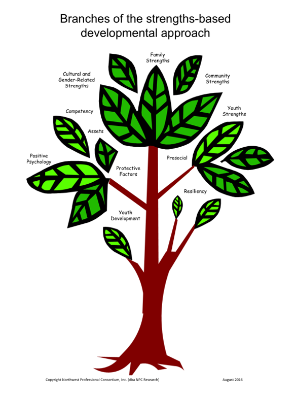 Tree diagram of branches of the strengths-based developmental approach