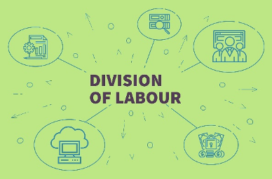 Division of labor graphic