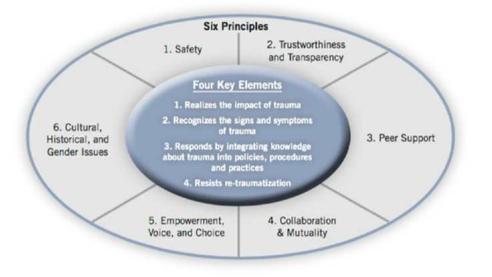 Six principles and four key elements of trauma informed practice