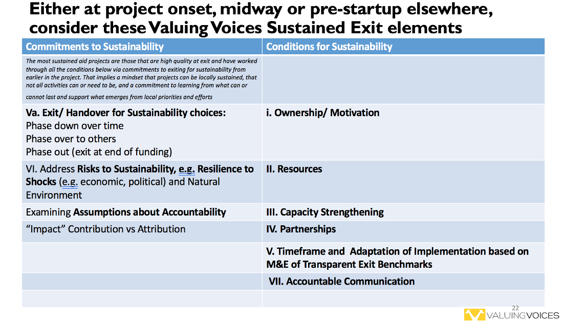 Consider these Valuing Voices Sustained Exit Elements table with information on commitments to sustainability and conditions for sustainability.