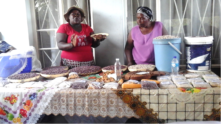 Chimanimani Busy Lady Women Group displaying their products during the field trip. Photo by Rachel Z.