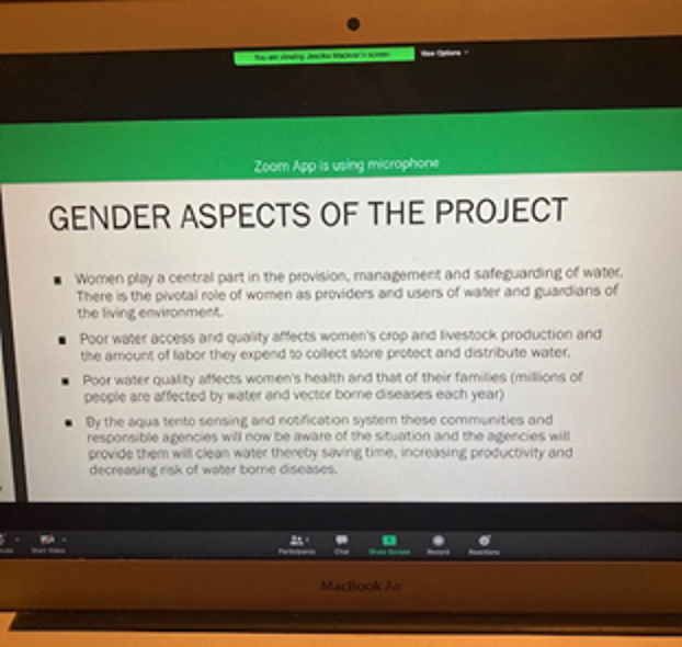 """Image of PowerPoint slide """"Gender Aspects of the Project"""""""
