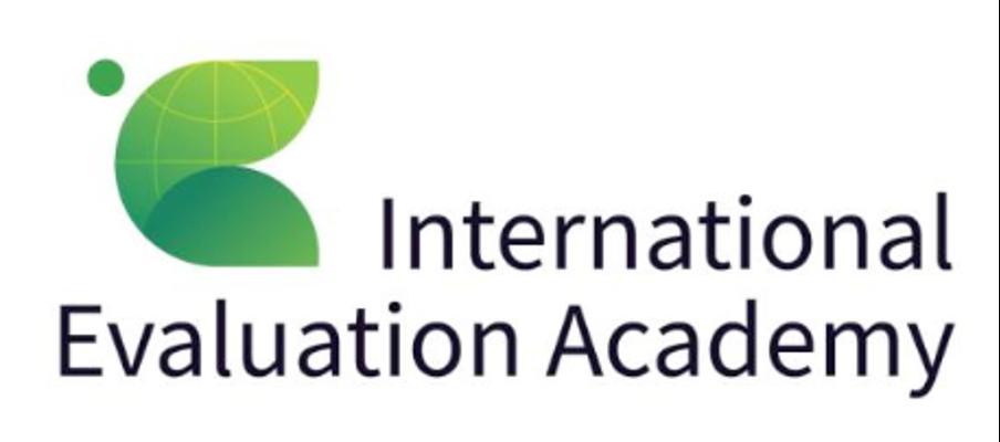 International Evaluation Academy logo