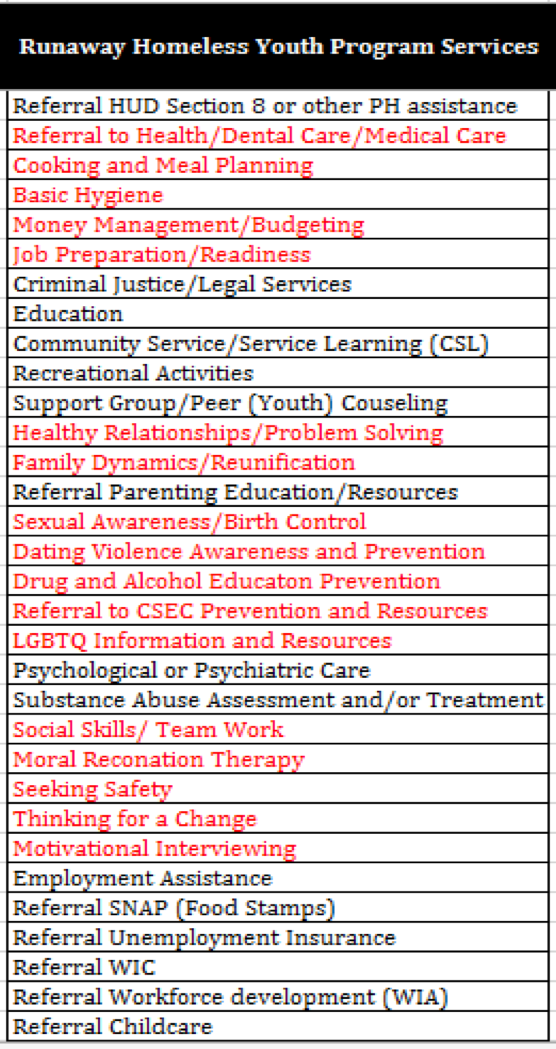 VOALA Runaway Homeless Youth Program Services database screenshot.